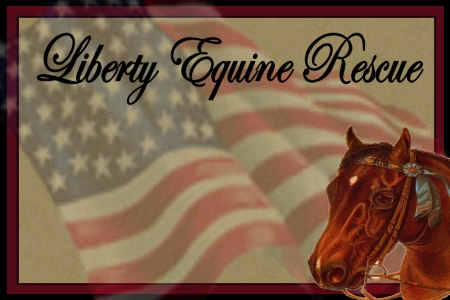 Liberty Equine Rescue
